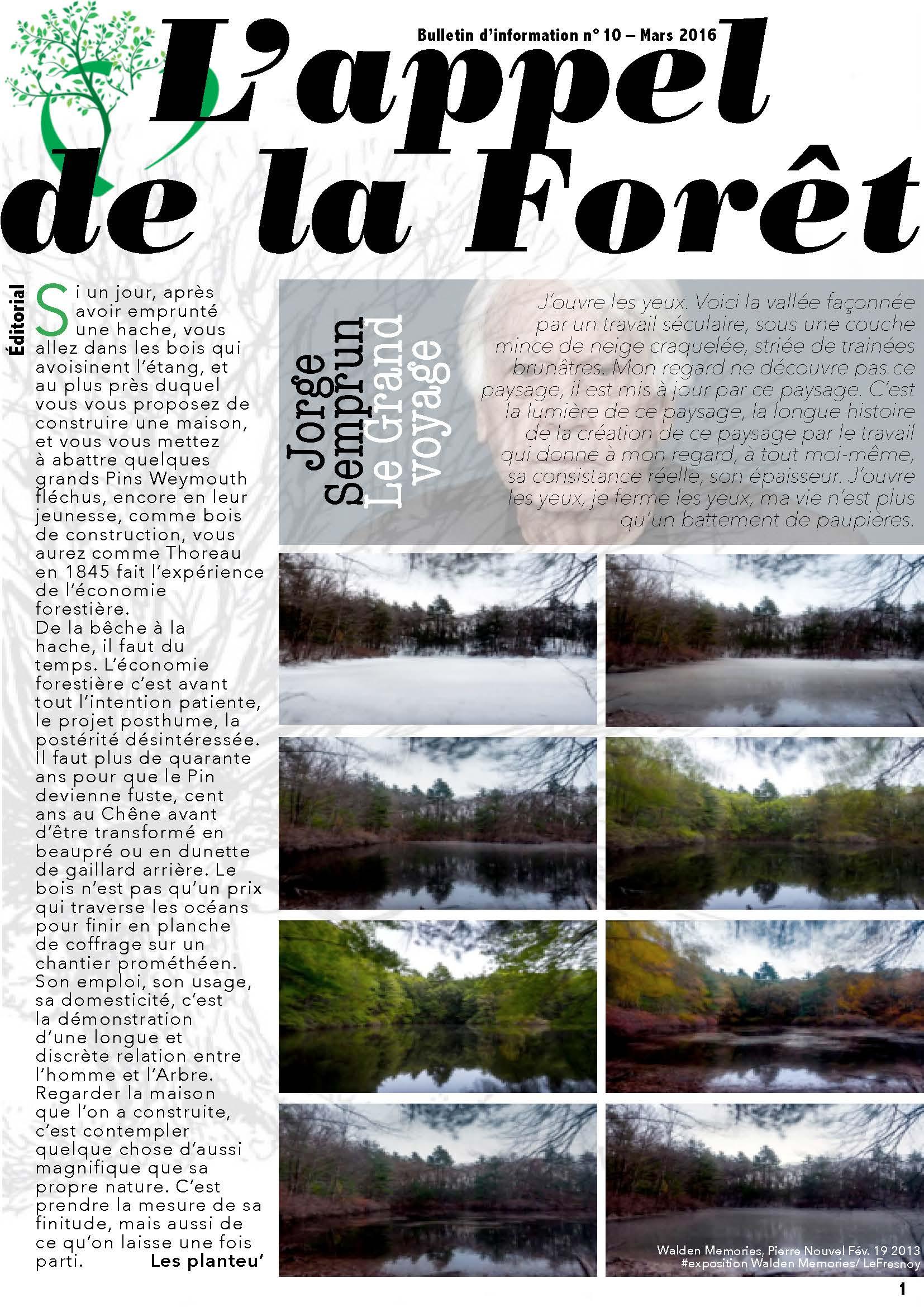 L'appel de la forêt / filière bois 1 / mars 2016
