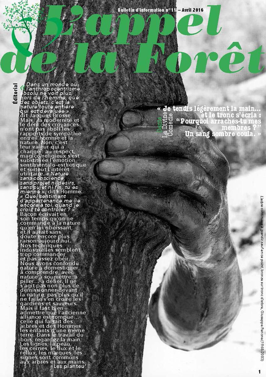 Appel de la forêt n°11 - la filière bois 2 - avril 2016
