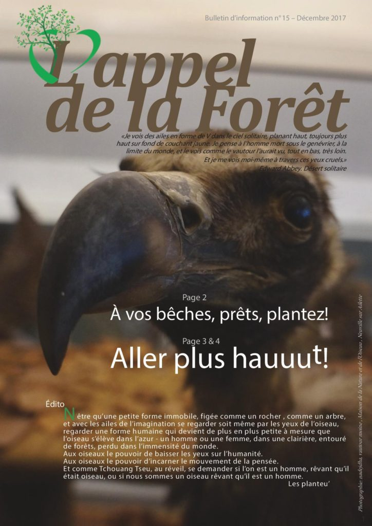 L'appel de la forêt n°15 – numéro spécial sur les oiseaux
