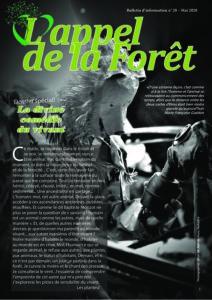 L'Appel De la Forêt #20